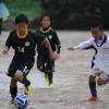 少年サッカー サッカーの試合はなぜ雨天中止にならないのか?